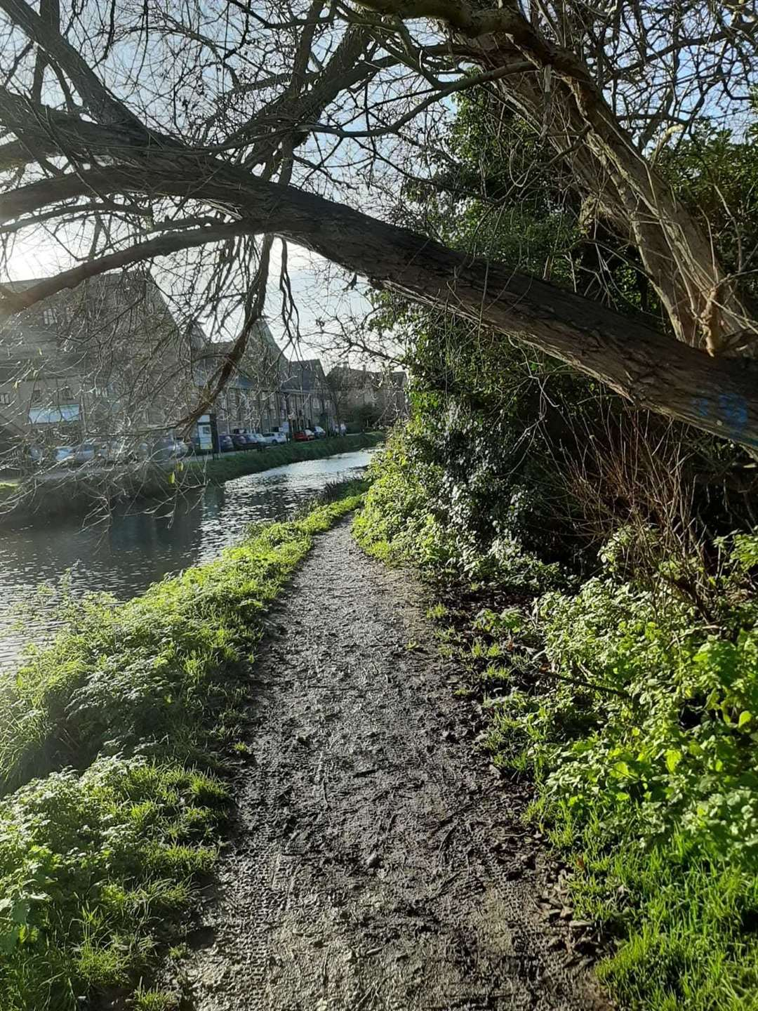 The slippery tow path (43208832)