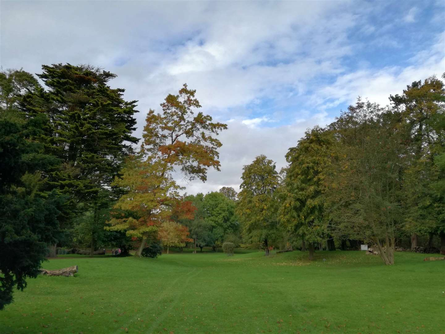Autumn at Easton Lodge(42479308)