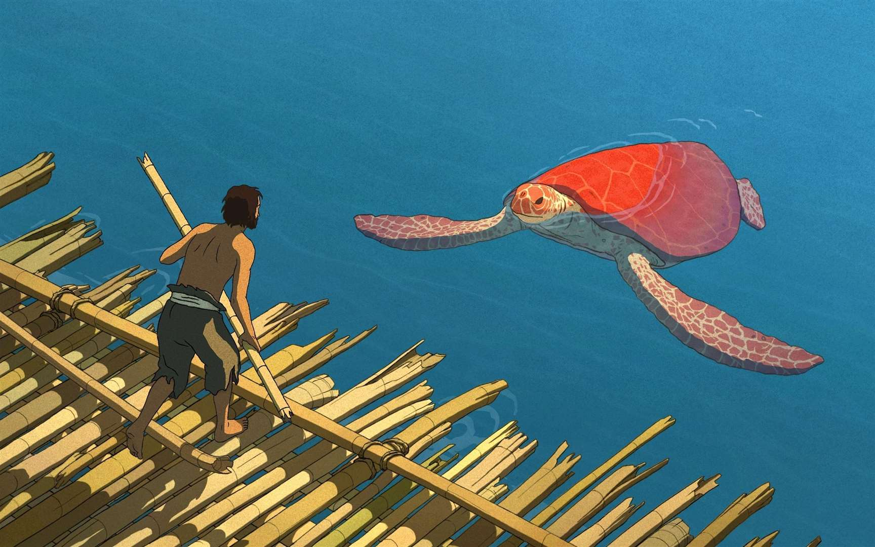 The Red Turtle (44630979)