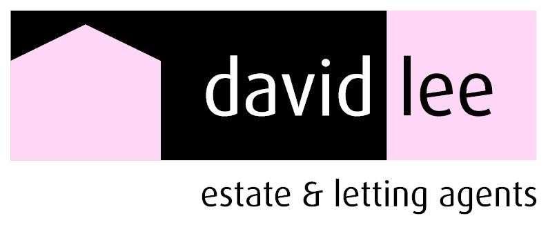 David Lee logo (52124502)