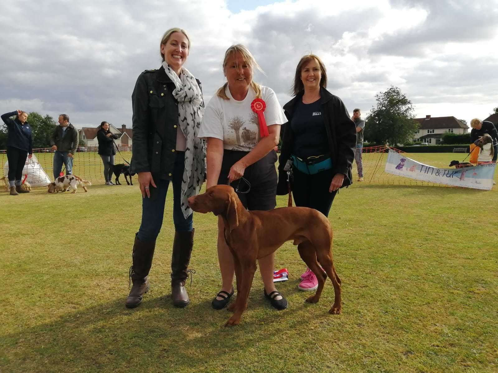 Vivien the Hungarian Vizsla, best in show with owner Pamela Joyce (16360505)
