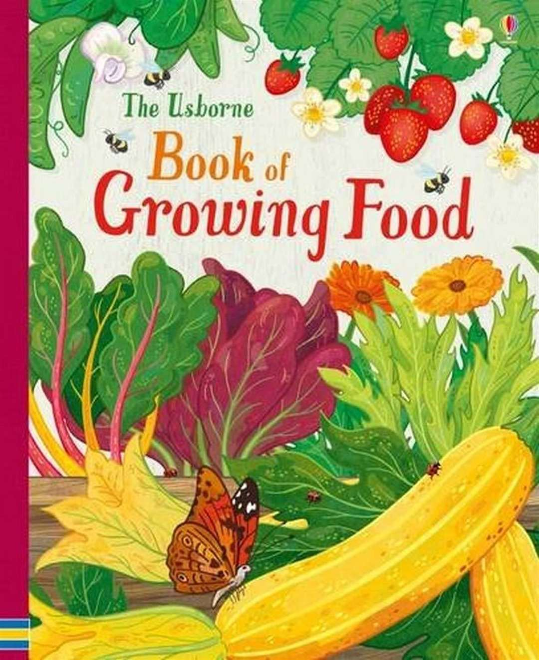The Usborne Book of Growing Food by Abigail Wheatley and Anni Betts (46204150)