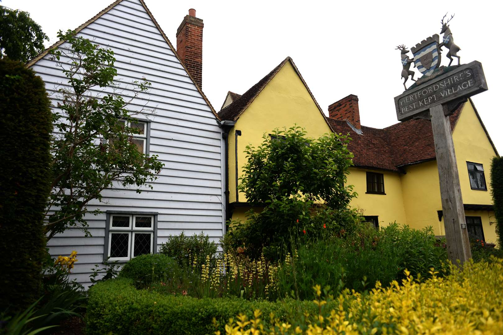 Much Hadham Village. Open Gardens preview pics. The Forge front garden. .Pic: Vikki Lince. (11785543)