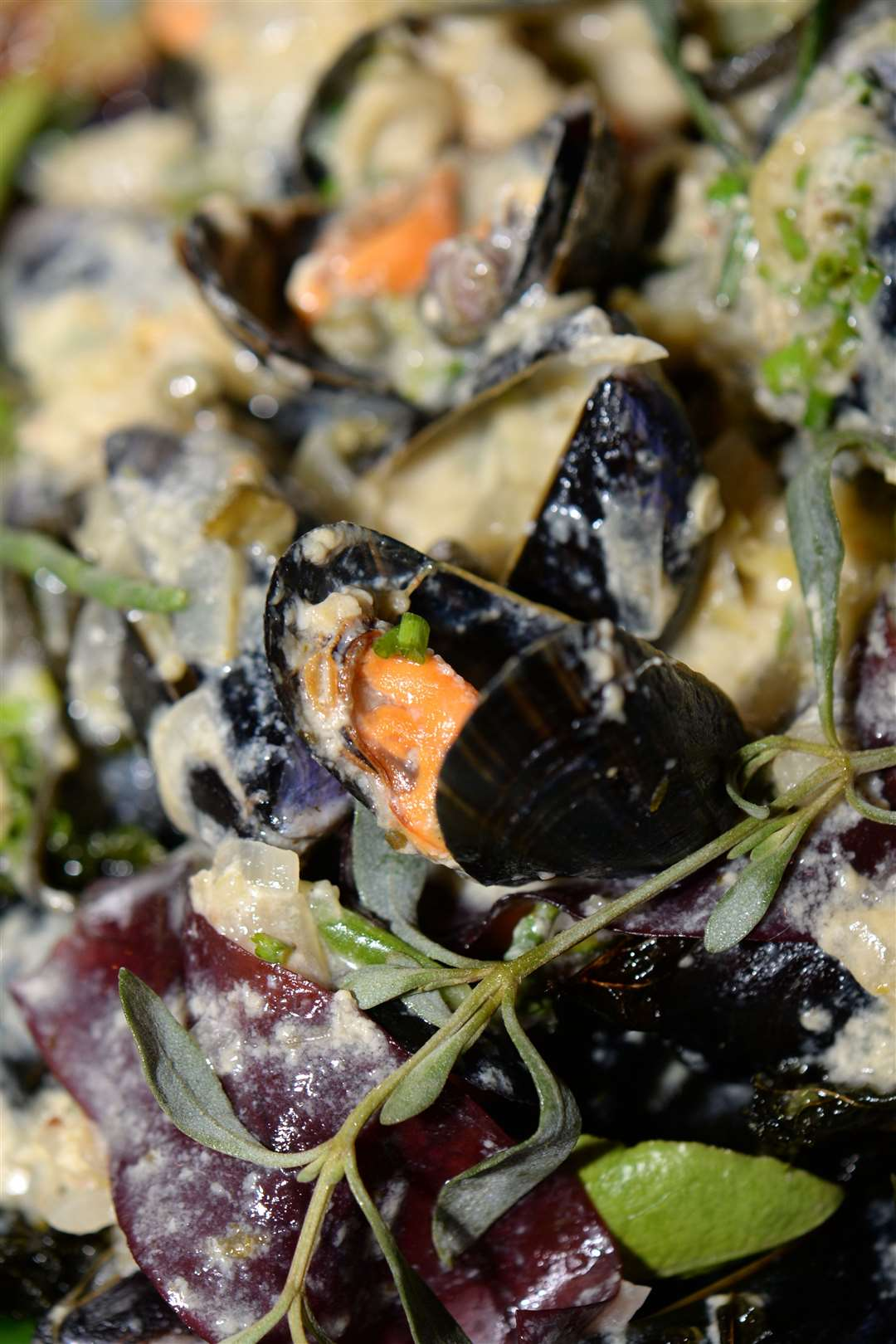 Saira's choice was native blueshell mussels in a Thai green and lemongrass curry sauce Pic: Vikki Lince (7656570)